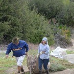 teaming up dragging out burlap full of invasive weeds