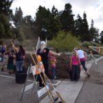 Preparing to spread mulch