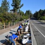 volunteer's planting the 5 gallon Hesperaloe's