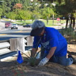 our volunteer from the Chula Vista Garden Club